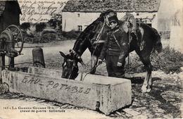 Thématiques 2018 Commémoration Fin De Guerre 1914 1918 Artilleur Et Son Cheval De Guerre Sollicitude - War 1914-18