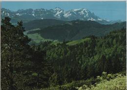 Blick Vom St. Anton Zum Alpstein - Photo: Gross - AI Appenzell Rhodes-Intérieures