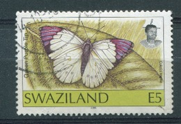 Swaziland Butterfly 2000 E5 Used - Swaziland (1968-...)