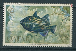 Qatar Fish Used - Qatar