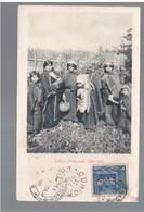 CHILE Indias Aruacanas (Mulchen) 1906 OLD POSTCARD 2 Scans - Cile