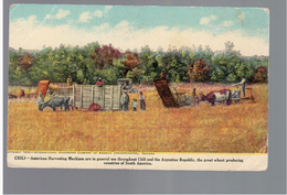 CHILE American Harvesting Machine- At Work Ca 1910 OLD POSTCARD 2 Scans - Cile
