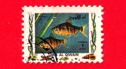 EMIRATI ARABI - UMM AL-QIWAIN - Usato - 1972 - Pesci - Tropical Fish -  1 - Umm Al-Qiwain