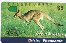 Australia - 1996 Tourism - Eastern Grey Kangaroo - A960342 - Australia