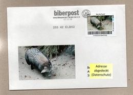 """Privatpost -  Biberpost  -   """"Heimische Tiere""""  - Marderhund (Nyctereutes Procyonoides) Auf Briefumschlag - Hunde"""