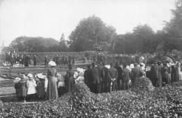 37-LANGEAIS- CARTE-PHOTO- FÊTES AGRICOLE 1910-  FANFARE - Langeais