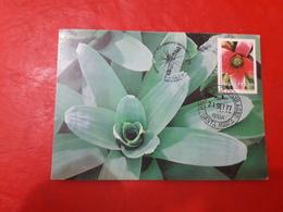 Le Brésil Une Carte FDC Des Fleurs 1977 - Tarjetas – Máxima