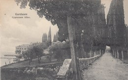 MALCESINE-GARDA-TREMOSINE-DESENZANO-GARDONE-RIVA-LAGO DI GARDA-GARDASEE-CYPRESSEN ALLEE-CARTOLINA ANNO 1915-25 - Verona