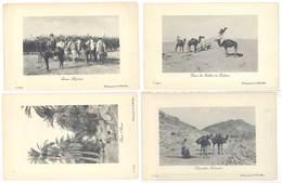 4 CPA  Algérie, Goum Algérien, Sahara, Oasis, Chamelier, Chameaux ...   ( S 3121 ) - Algérie