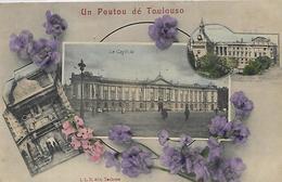 31, Haute Garonne, TOULOUSE, Un Poutou Dé Toulouso, Scan Recto-verso - Toulouse