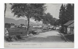 88   REMIREMONT   LA ROUTE  DE PLOMBIERES  BON ETAT   2 SCANS - Remiremont