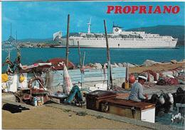 """CPM/CPSM - PROPRIANO - Le Bateau """"Provence"""" à Quai Et Un Coin Pittoresque Du Port De Pêche - France"""