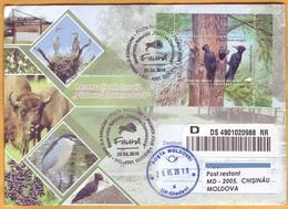 2018 Moldova Moldavie Fauna Privata Used FDC Nature, Nature Reserve. Forest. Birds. Woodpecker. - Moldavië