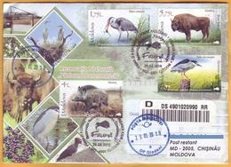 2018 Moldova Moldavie Fauna Private Used FDC Nature, Nature Reserve. Forest. Birds. Animals. Boar. Zubr. - Moldavië
