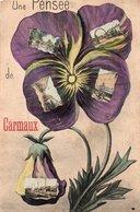 Cp Multivues Souvenir De CARMAUX - Carmaux