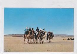 HOGGAR. UN GROUPPE DE TAUREGS, AGENCE DE TOURISME ALGERIENNE. VOYAGE CIRCA 1990s- BLEUP - Algerije