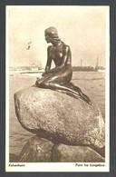 Copenhague. *Parti Fra Langelinie* Edit. John Meinckes Nº 142. Circulada 1953. - Dinamarca
