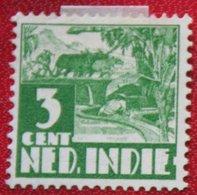 Karbouw 3 Ct NVPH 249 With Watermark 1938 Ongebruikt / MH NEDERLAND INDIE / DUTCH INDIES - Indes Néerlandaises