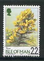 ILE DE MAN- Y&T N°849- Oblitéré (fleurs) - Sonstige