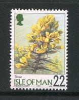 ILE DE MAN- Y&T N°849- Oblitéré (fleurs) - Autres