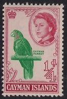 Cayman Islands 1962 - 64 QE2 1/2d Cayman Parrot MM SG 165 ( K1414 ) - Cayman Islands