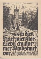 CPSM Gruss Aus Waldshut Am Hochrhein (carte Dessinée) - Waldshut-Tiengen