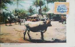 O) 1908 GUATEMALA, BULLS-COWS-WON-ESTATE OF BUENOS AYRES, STAMP LAKE AMATITLAN 10c Orange- OVERPRINT SURCHARGE 1908 1c. - Guatemala