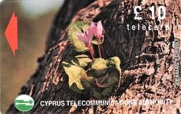 *CIPRO - 18CYPC* -  Scheda Usata - Cyprus