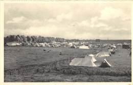 Heist S/Mer - Camping - Thill N° 1004 - Heist