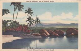 ILHA DE PAQUETA,. RIO  DE JANEIRO. BRASIL. VOYAGE 1952- BLEUP - Rio De Janeiro