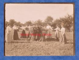 Photo Ancienne - Groupe De Jeune Femme & Fille Se Tenant La Main - Vers 1900 -  Ronde Nature Mode Robe Dress - Photos