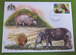 Numisbrief Flag Series Gambia Nilpferd Tiere 1 Butut 1974 Stempel Briefmarken - Gambie