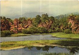 São Tomé E Principe - Lagune De Ponta Furada - Sao Tome Et Principe