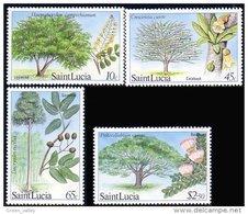 580 Saint Lucia Arbres Trees MNH ** Neuf SC (LUC-15a) - St.Lucie (1979-...)