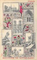Souvenir De Notre-Dame De Paris - Multivues, Basilique, Gargouilles - Edition Noyer - Carte Colorisée - Greetings From...