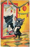 Kat In T Pak, Surpriseparty - ( Vita Nova - 1963, Kootwijkerbroek) - Chat, Jacquet - Humorkaarten
