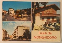 SALUTI DA MONGHIDORO  VIAGGIATA FG - Bologna