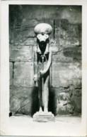 EGYPT EGITTO  Statues Of The Catheaded Goddess Sekhmet  Temple Of Ptah - Luxor