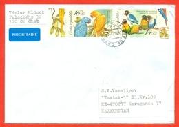 Czech Republic 2004.Bird. Parrots. The Envelope Past Mail.Airmail. - Covers & Documents