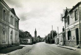 CPSM - SAINT-COLOMBIN - Mairie Et Postes - France