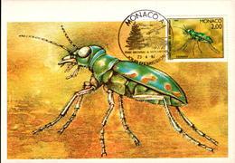N°1567 à 1572 Serie Insectes Du Parc Du Mercantour - Maximum Cards