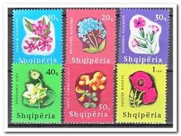 Albanië 1965, Postfris MNH, Flowers - Albanië