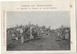 16 ST MEME LES CARRIERES SCENE DE VENDANGES VIGNOBLE CHATEAU CROIZET - Francia