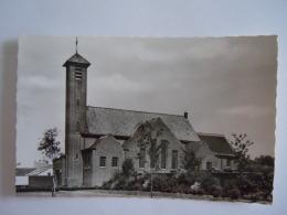 Boom Bosstraat De Kerk Copyright J. Prevot Echte Foto - Boom