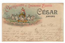 ANVERS CHOCOLATERIE & CONFISERIE SUISSE  CESAR Litho - Antwerpen