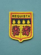 Ecusson à Coudre De Réquista (12) - Patches