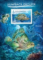 SOLOMON ISLANDS 2015 SHEET WWF FISHES POISSONS MARINE LIFE HUMPBACK GROUPER CROMILEPTES ALTIVELIS WILDLIFE Slm15501b - Salomon (Iles 1978-...)