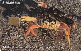 Cuba, CUB-118, Cuban Crab (Gecarcinus Lateralis), 2 Scans - Cuba