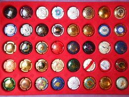 Lot N° 2 De 40 Capsules De Champagne Diverses Dans Plaque De Collection - Collections