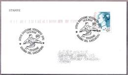 GIUGNO DEL CACCIATORE. Castione Veronese, Verona, 2000 - Águilas & Aves De Presa